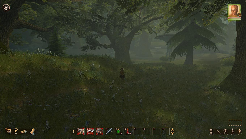 Klicke auf die Grafik für eine größere Ansicht  Name:Ein Wald.jpg Hits:104 Größe:119,9 KB ID:81453