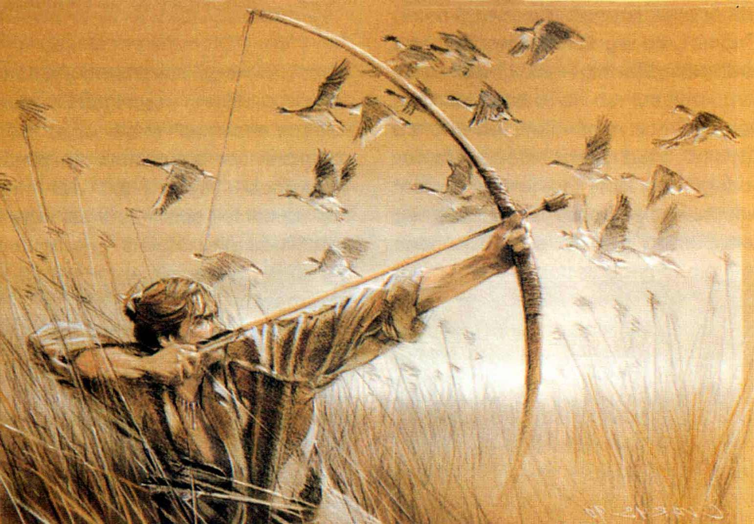 Klicke auf die Grafik für eine größere Ansicht  Name:Jagd_Bogen-2.jpg Hits:75 Größe:152,2 KB ID:80559