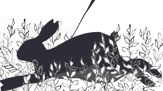 Klicke auf die Grafik f�r eine gr��ere Ansicht  Name:Kaninchen2.jpg Hits:56 Gr��e:175,2 KB ID:78248